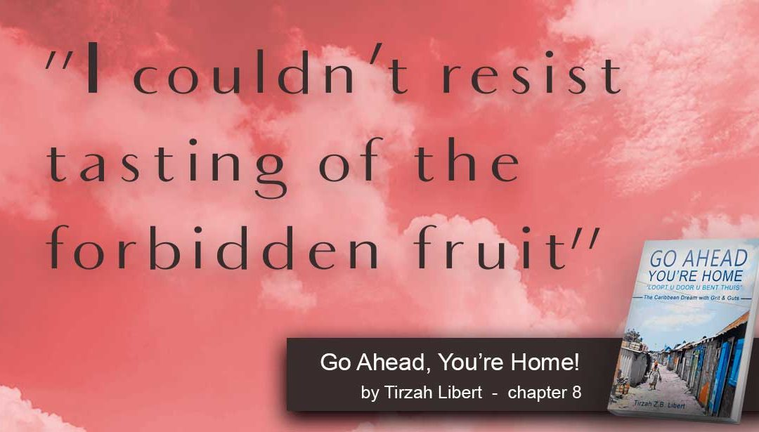 """""""Go Ahead, You're Home"""" Drugs, Sex and Babies  – chapter 8"""